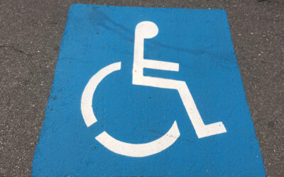 Elements of the Emergency Voice Communication (Disabled Refuge) Systems & Their Significance